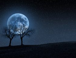 Fenomena Blue Moon yang Bisa Dilihat Nanti Malam