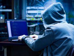 White Hat Hacker, Peretas yang Membantu Meningkatkan Keamanan Siber